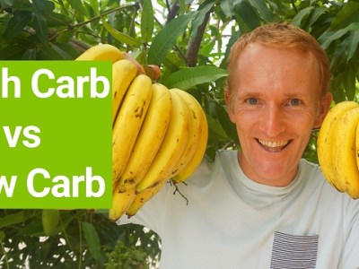High Carb Diet, Slow Carb Diet, Zero Carb Diet - How Many Carbs