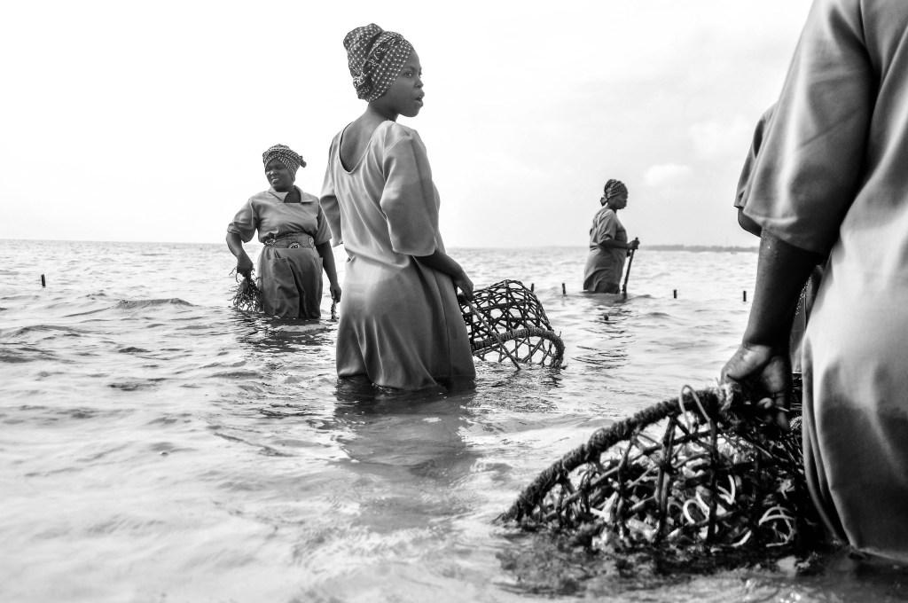 Seaweed Centre in Paje, Zanzibar - Rahim Saggaf Photography