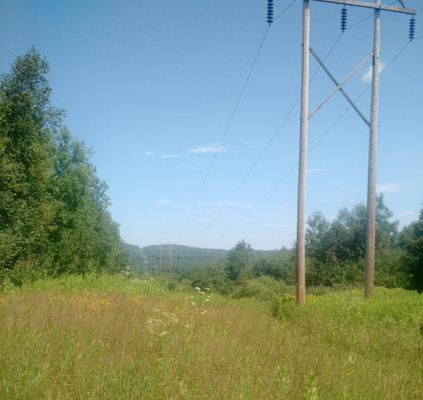 Power Lines take 2