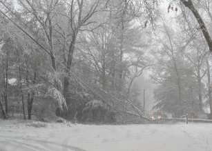 A fallen tree on Randall Street in Easton took down some wires Tuesday morning, March 13, 2018. (Photo courtesy Easton Fire Department)