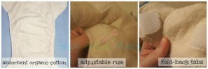 Organic Caboose ~ Organic Aplix Fitted Diaper Features