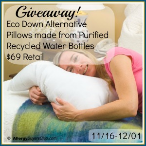 Blogger Opp: Eco Down Alternative Pillows made from Purified Recycled Water Bottles $69 Retail