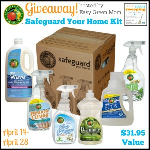 Safeguard Your Home Kit Giveaway - rays of bliss