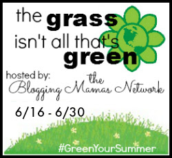 Green Your Summer Giveaway Hop
