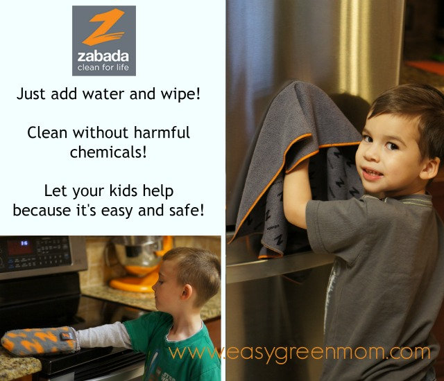Zabada Clean! A Safer, Greener and Easier Way to Clean! Review from rays of bliss
