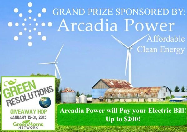 Green Resolutions Grand Prize