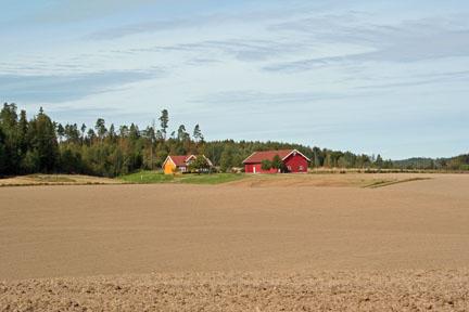 Panteholtet Farm