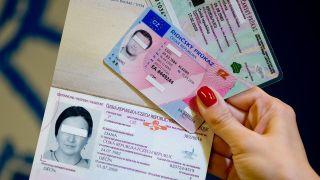 Eine Frau hält gefälschte tschechische Dokumente in den Händen (Quelle: dpa/Sven Hoppe)