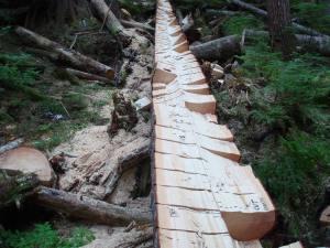 artistic balsam wood