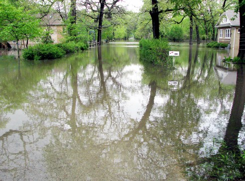 The Des Plaines River flooded much of Riverside Lawn, with water reaching almost to 39th Street on Stanley Avenue. (Photo by Allen Goodcase)