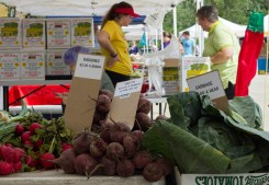 Produce for sale at the Jeffery Farm Inc. stand at the Brookfield farmers market on Saturday, June 13, 2015.|Photo by Jennifer T. Lacey