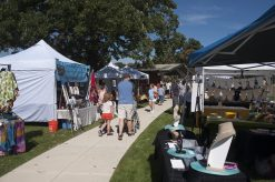 Local vendors and artists participated in the arts fair. | William Camargo/Staff Photographer