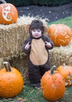 Brookfield Zoo's annual Boo!