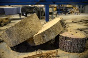 Leftover pieces from the tree are seen cut up on Aug. 10. | Alexa Rogals/Staff Photographer