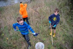 Members of Boy Scout Troop 24 pick up trash in the forest preserve area along the south banks of the Des Plaines River during the 42nd Annual Hofmann Dam River Rats Fall Clean-up on Oct. 21. | Alexa Rogals/Staff Photographer