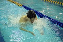 LT's Michael Walsh swims breaststroke in the 200-yard medley relay on Friday, Jan. 19, 2018, during a swim and dive meet at Lyons Township High School South Campus in La Grange, Ill.