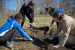RBHS students clear out a space to plant pecan trees on April 28, during the Riverside Brookfield High School Day of Service at Indian Gardens in Riverside. | Alexa Rogals/Staff Photographer