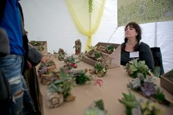 Lisa Ginsburg sells succulents to attendees on May 19, during the annual Riverside Arts Weekend, at Guthrie Park in Riverside. | Alexa Rogals/Staff Photographer