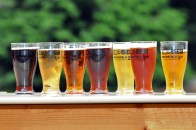 ZooBrew the annual beer-tasting festival at Brookfield Zoo, 3300 Golf Road in Brookfield, returns Saturday, June 23 and Sunday, June 24 from 4 to 8 p.m.