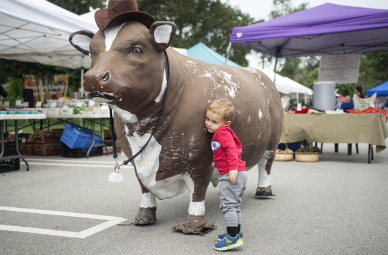 Sebastian Miller, 2, of Brookfield, hugs the cow from Brookfield Restaurant on Sept. 8, during the weekly Brookfield Farmers Market at Village Hall.   Alexa Rogals/Staff Photographer