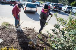 Tom Tulik, left, a Brookfield gardening club president Cathy Juarez rake leaves during a Project Neighborhood Involvement in a Clean Environment (N.I.C.E.) in Brookfield. | ALEXA ROGALS/Staff Photographer