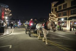 Attendees enjoy horse-drawn carriage rides down Quincy Street on Dec. 7, during the 44th annual Chamber of Commerce Holiday Stroll in downtown Riverside. | Alexa Rogals/Staff Photographer