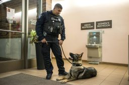 North Riverside Officer Ted Roberson communicate with his dog, Gunner, by using commands in Czech. That way, he says, the dog won't misinterpret what he's saying. Brookfield's police dog, Sire, responds to commands in Dutch. | Alexa Rogals/Staff Photographer