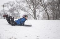 Noah Angarita, 8, of Riverside, goes sledding down a small hill on Jan. 12, at Swan Pond in Riverside. | Alexa Rogals/Staff Photographer