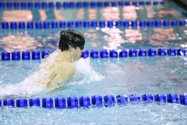 LTHS senior Michael Walsh qualified for the state meet in four events (2 relays, 2 inidividual races) at the York Sectional on Saturday, Feb. 16 in Elmhurst. (Courtesy of Erin Rodriguez)