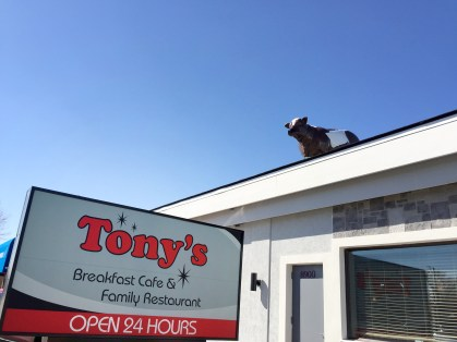 Tony's Family Restaurant in its new location at 8900 Ogden Ave.