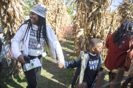 Attendees try to find the way out of a corn maze on Saturday, Oct. 12, during the Boo At The Zoo event at Brookfield Zoo.