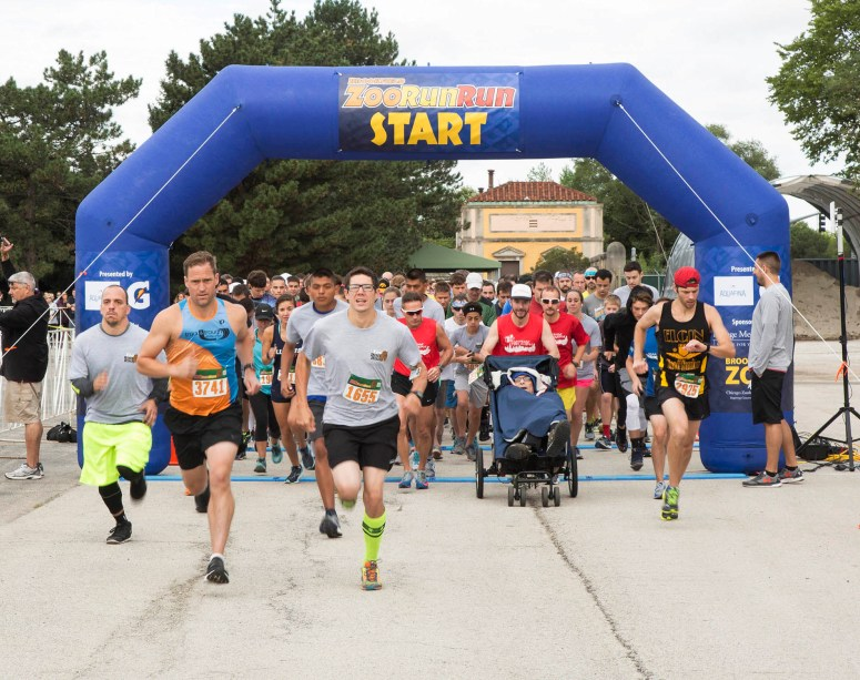Brookfield Zoo invites runners and walkers of all ages to participate in the virtual Zoo Run 5K. Youngsters 4 to 13 years old are invited to participate in a virtual 1-mile Kids' Dash.