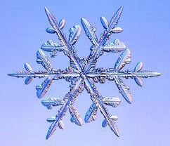 ICE WATCH @ RBSC 20th Jan