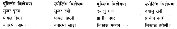 RBSE Class 10 Hindi व्याकरण विशेषण - 8