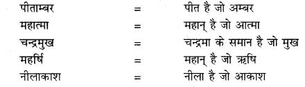RBSE Class 10 Hindi व्याकरण समास 183