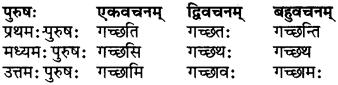RBSE Class 6 Sanskrit परिशिष्टम् 28