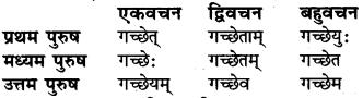 RBSE Class 6 Sanskrit व्याकरण धातु-रूपम् 15