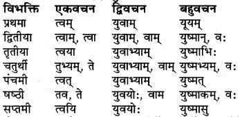 RBSE Class 6 Sanskrit व्याकरण शब्द-रूप प्रकरणम् 20