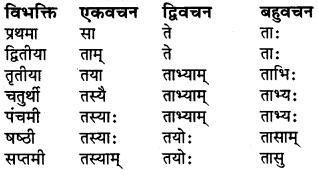 RBSE Class 6 Sanskrit व्याकरण शब्द-रूप प्रकरणम् 23