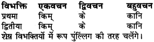 RBSE Class 6 Sanskrit व्याकरण शब्द-रूप प्रकरणम् 27