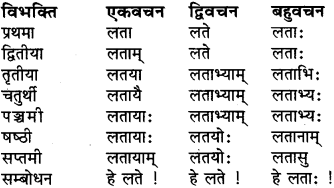 RBSE Class 6 Sanskrit व्याकरण शब्द-रूप प्रकरणम् 7