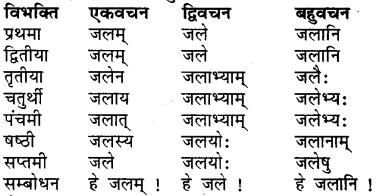 RBSE Class 7 Sanskrit व्याकरण शब्द रूप प्रकरणम् 13