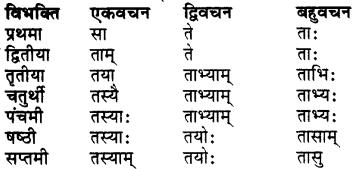 RBSE Class 7 Sanskrit व्याकरण शब्द रूप प्रकरणम् 23