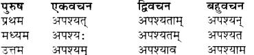 RBSE Class 7 Sanskrit व्याकरण शब्द रूप प्रकरणम् 51