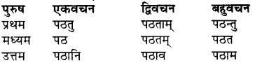 RBSE Class 7 Sanskrit व्याकरण शब्द रूप प्रकरणम् 73