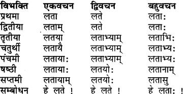 RBSE Class 7 Sanskrit व्याकरण शब्द रूप प्रकरणम् 8