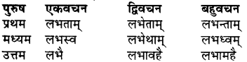 RBSE Class 7 Sanskrit व्याकरण शब्द रूप प्रकरणम् 83