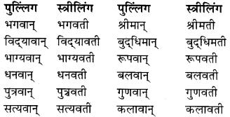 RBSE Class 9 Hindi व्याकरण लिंग 10