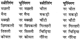 RBSE Class 9 Hindi व्याकरण लिंग 13