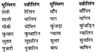 RBSE Class 9 Hindi व्याकरण लिंग 4